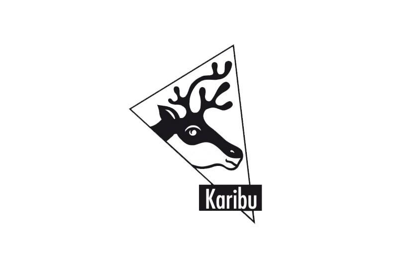Karibu Blockbohlengarage mit Flachdach 40 mm - naturbelassen