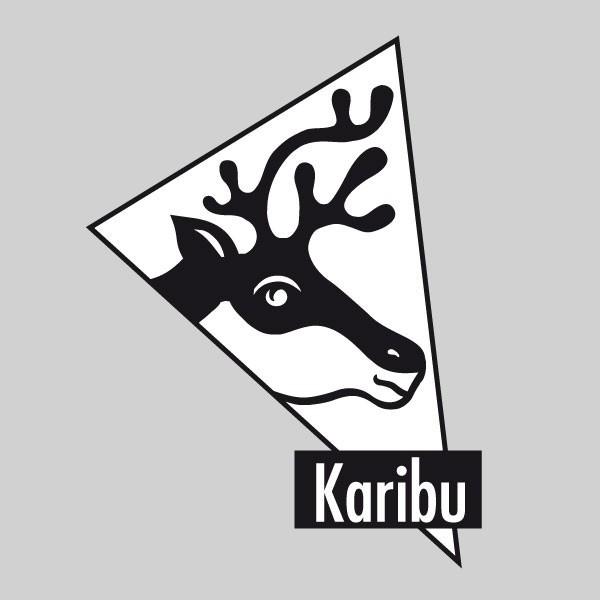 Karibu Holz-Gartenhaus Grauburg 7 - 19 mm gerades Stufendach Schraub- Stecksystem - terragrau