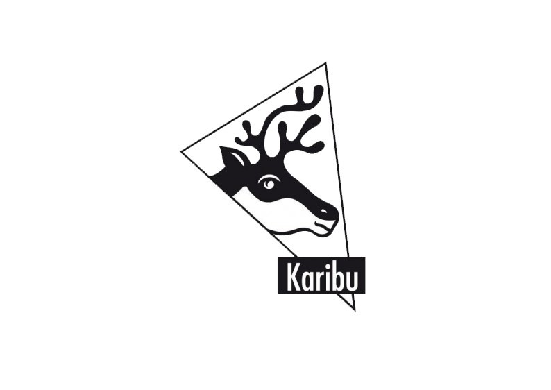 Karibu Blockbohlengarage mit Satteldach 40 mm - naturbelassen